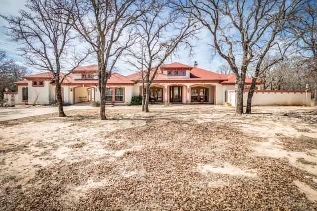 117 Redtail Court, Weatherford, TX 76088 (MLS #13793284) :: The Mitchell Group