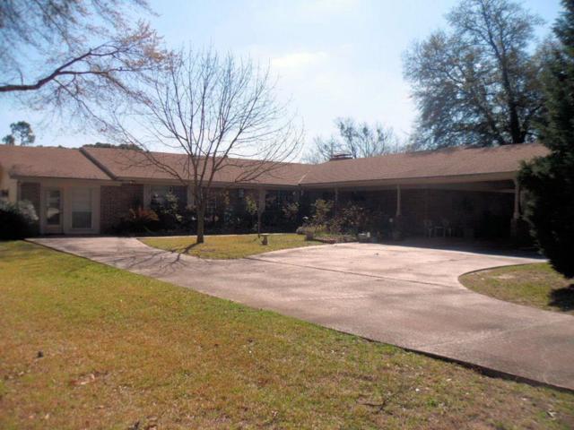 233 Fairlawn Drive, Hideaway, TX 75771 (MLS #13793975) :: Team Hodnett
