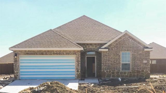 3205 Hollow Branch Drive, Royse City, TX 75189 (MLS #13794755) :: Team Hodnett