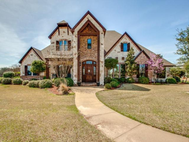2220 Twin Creeks Court, Pilot Point, TX 76258 (MLS #13794919) :: Magnolia Realty