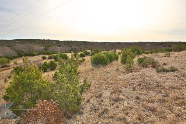 20ac Fm 89, Tuscola, TX 79562 (MLS #13795249) :: The Tonya Harbin Team