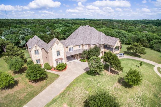 1374 Overlook Circle, Cedar Hill, TX 75104 (MLS #13795785) :: Pinnacle Realty Team