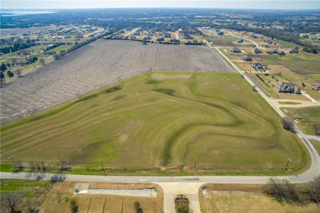 000 Tbd Forest Grove, Lucas, TX 75002 (MLS #13795807) :: Team Hodnett