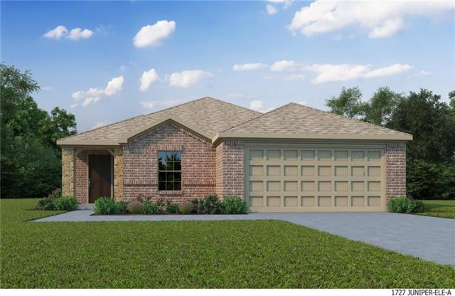 1210 Mount Olive, Forney, TX 75126 (MLS #13795989) :: RE/MAX Landmark