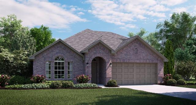 430 George Drive, Fate, TX 75189 (MLS #13795993) :: Team Hodnett