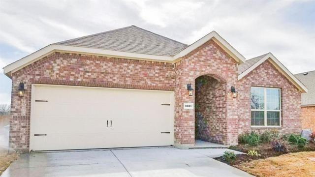 3021 Armstrong Street, Denton, TX 76209 (MLS #13796007) :: Team Hodnett