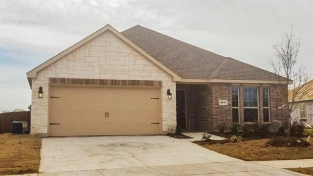 2805 Dominion Street, Denton, TX 76209 (MLS #13796089) :: Team Hodnett