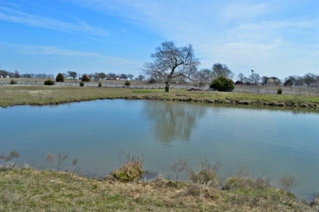TBD County Road 1525, Bonham, TX 75418 (MLS #13796506) :: Team Hodnett