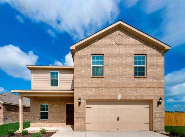 1623 White Mountain Way, Princeton, TX 75407 (MLS #13796868) :: Team Hodnett