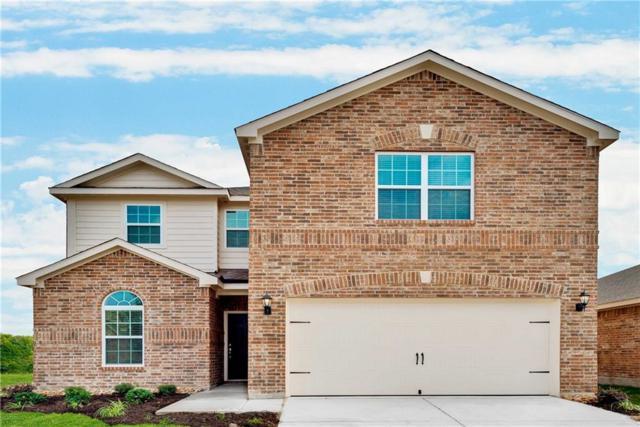 1617 White Mountain Way, Princeton, TX 75407 (MLS #13796902) :: Pinnacle Realty Team