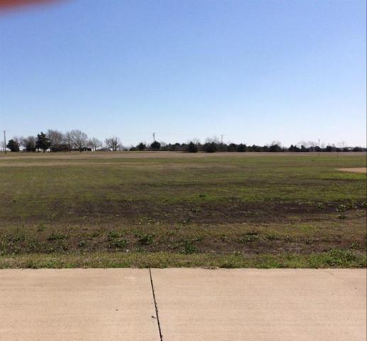1600 Winding Creek Lane, Rockwall, TX 75032 (MLS #13797233) :: Baldree Home Team