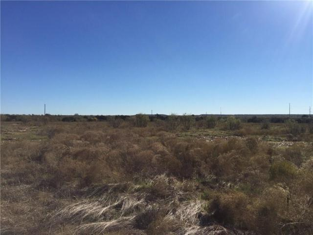 Lot 52 Mourning Dove Court, Graford, TX 76449 (MLS #13797427) :: RE/MAX Town & Country