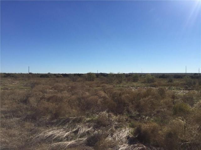 Lot 52 Mourning Dove Court, Graford, TX 76449 (MLS #13797427) :: Team Hodnett