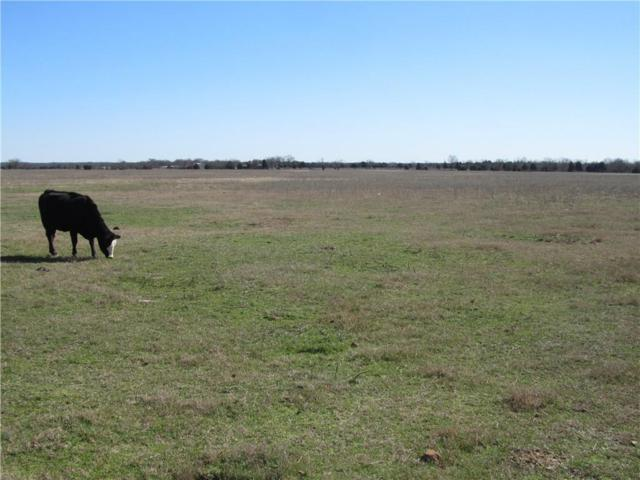 TBD2 Fm 2101, Quinlan, TX 75474 (MLS #13797440) :: NewHomePrograms.com LLC