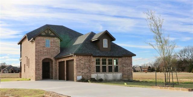 151 Palisades Circle, Gordonville, TX 76245 (MLS #13797615) :: The Real Estate Station