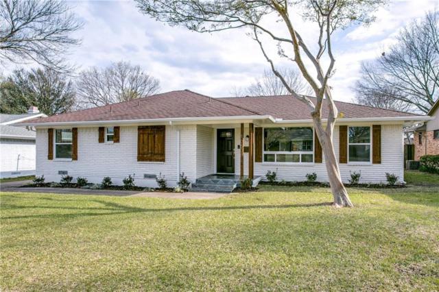 10508 Royalwood Drive, Dallas, TX 75238 (MLS #13797857) :: Robbins Real Estate Group
