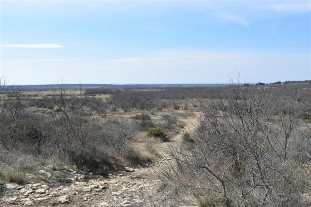 115 C.R. 223, Rockwood, TX 76873 (MLS #13798020) :: Team Hodnett