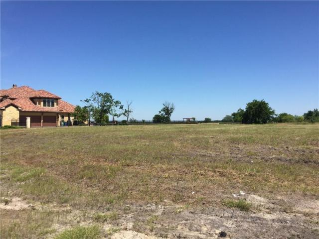 1110 Warwick Court, McLendon Chisholm, TX 75032 (MLS #13798677) :: Team Hodnett