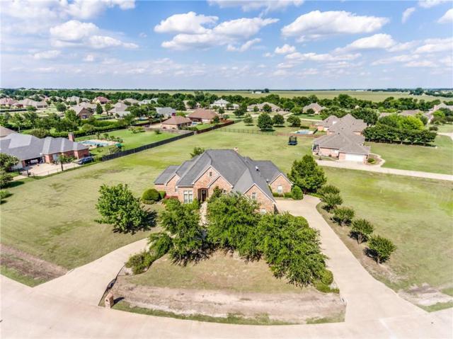 128 Spring Grove Drive, Waxahachie, TX 75165 (MLS #13798912) :: Century 21 Judge Fite Company