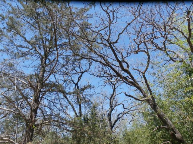 Lot 14 NW Cr 3324, Frost, TX 76641 (MLS #13799077) :: The Heyl Group at Keller Williams