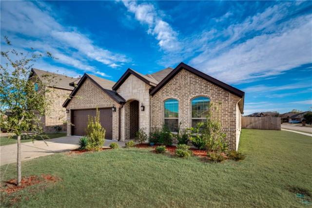 2038 Fair Crest Trail, Forney, TX 75126 (MLS #13799391) :: Kindle Realty