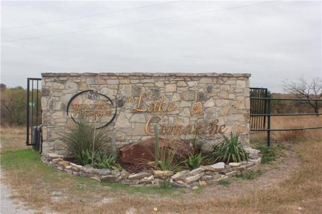 TBD Blue Heron Ct Court, Comanche, TX 76442 (MLS #13801694) :: Team Hodnett