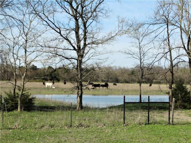 3519 Bethel Cannon Road #23.7, Van Alstyne, TX 75495 (MLS #13802487) :: The Rhodes Team