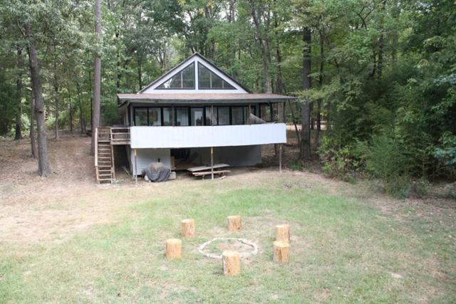 58 Dogwood Trail, Mount Vernon, TX 75457 (MLS #13802703) :: Team Hodnett