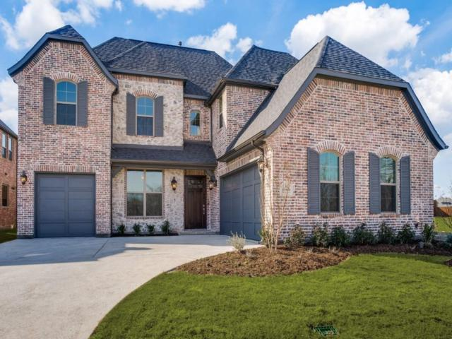 15069 Starry Night Lane, Frisco, TX 75035 (MLS #13805158) :: Team Hodnett