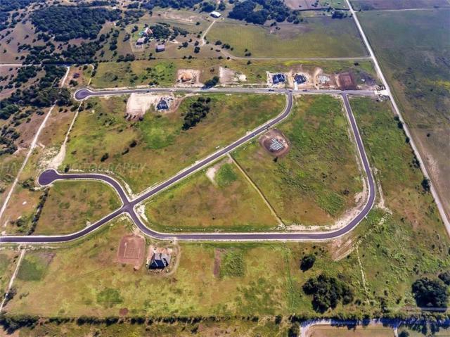 0 Palo Alto Drive, Springtown, TX 76082 (MLS #13805201) :: Team Hodnett