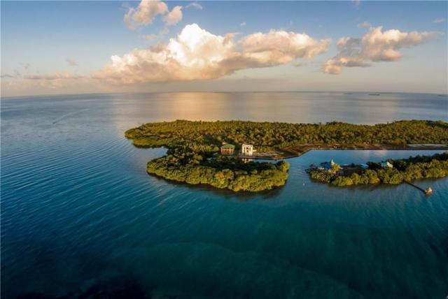12345 Placencia Caye, Belize, TX 99999 (MLS #13809133) :: Magnolia Realty