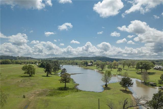 11870 Cr 4401, Larue, TX 75770 (MLS #13809886) :: The Real Estate Station