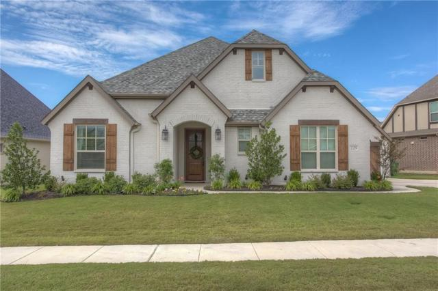 229 Parkview Drive, Aledo, TX 76008 (MLS #13810264) :: Team Hodnett