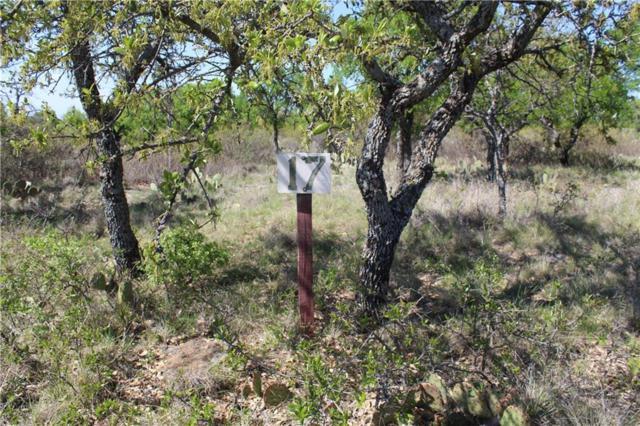 17 Deepwater Road, Brownwood, TX 76801 (MLS #13811620) :: Robbins Real Estate Group