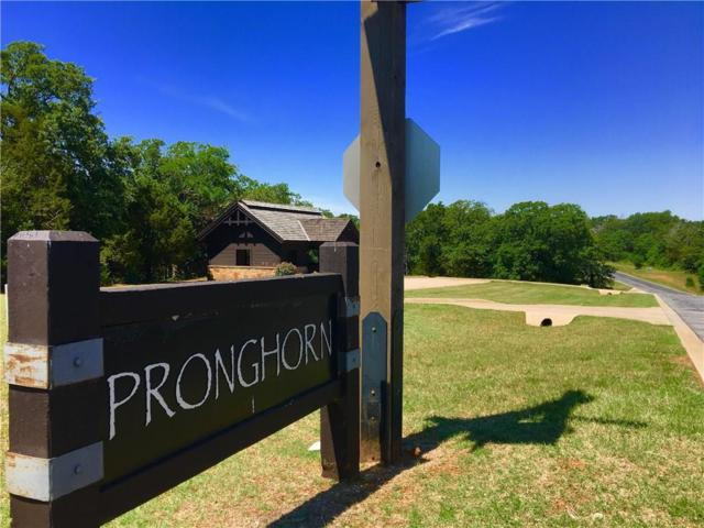 0 Pronghorn Drive, Gordonville, TX 76245 (MLS #13815732) :: The Sarah Padgett Team