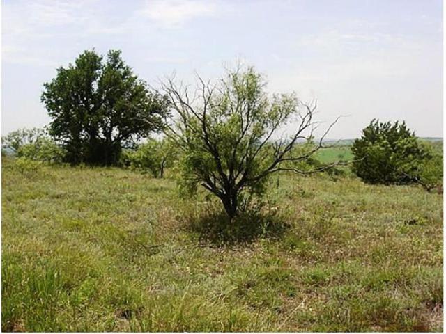 Lot 59 Comanche Lake Road, Comanche, TX 76442 (MLS #13817093) :: Team Hodnett