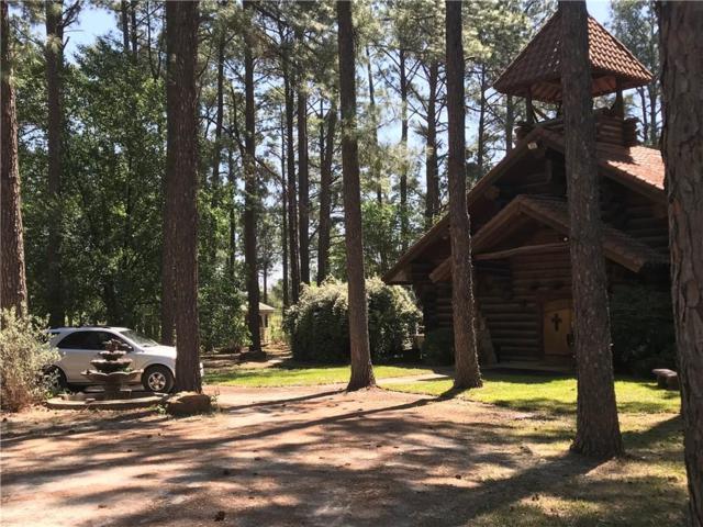111 Cowboy Court, Granbury, TX 76048 (MLS #13818616) :: Magnolia Realty