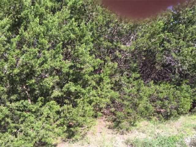 927 Apache Ridge Road, Granbury, TX 76048 (MLS #13820965) :: Frankie Arthur Real Estate