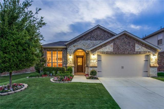 904 Green Coral Drive, Little Elm, TX 75068 (MLS #13822027) :: RE/MAX Performance Group