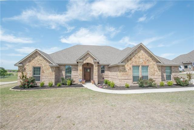 407 Scenic View Drive, Aledo, TX 76008 (MLS #13822065) :: Potts Realty Group