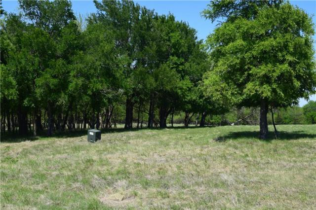 00 County Road 176, Celina, TX 75009 (MLS #13823891) :: The Cheney Group