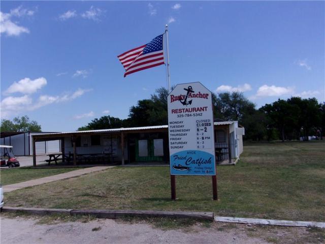 3071 Harbor Dr, May, TX 76857 (MLS #13823979) :: Team Hodnett