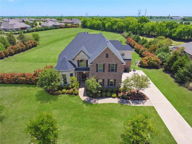 4608 Ravensthorpe Drive, Parker, TX 75002 (MLS #13824590) :: RE/MAX Town & Country