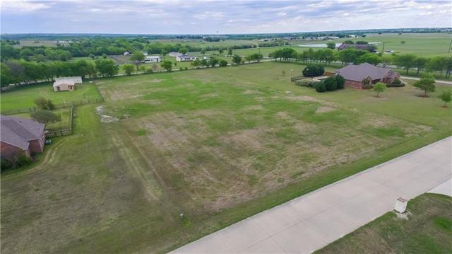 9050 Prairie Meadow Lane, Celina, TX 75009 (MLS #13825179) :: Kimberly Davis & Associates