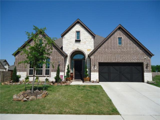 1544 Torrent Drive, Little Elm, TX 75068 (MLS #13825942) :: Kimberly Davis & Associates