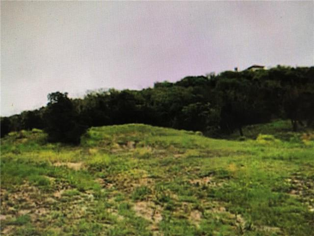 2243 Mountain Lakes Drive, Cedar Hill, TX 75104 (MLS #13826061) :: Kimberly Davis & Associates
