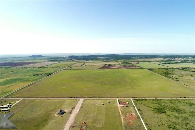 10 Ac Parcel 2, Cr 621, Tuscola, TX 79562 (MLS #13826374) :: The Tonya Harbin Team