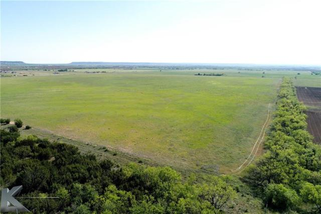 10 Ac. Parcel 3, Cr 621, Tuscola, TX 79562 (MLS #13826376) :: The Tonya Harbin Team