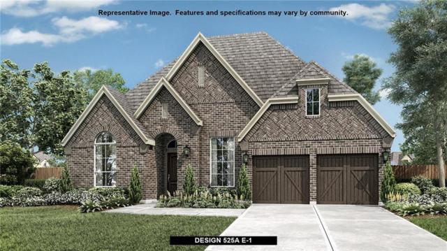 3215 Prancer Way, Celina, TX 75009 (MLS #13826666) :: Kimberly Davis & Associates