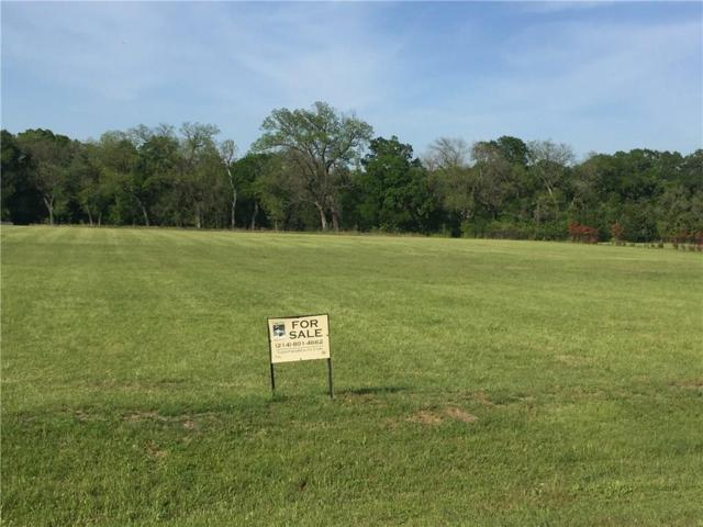 103 E Hidden Meadow Court, Cresson, TX 76035 (MLS #13826968) :: RE/MAX Town & Country